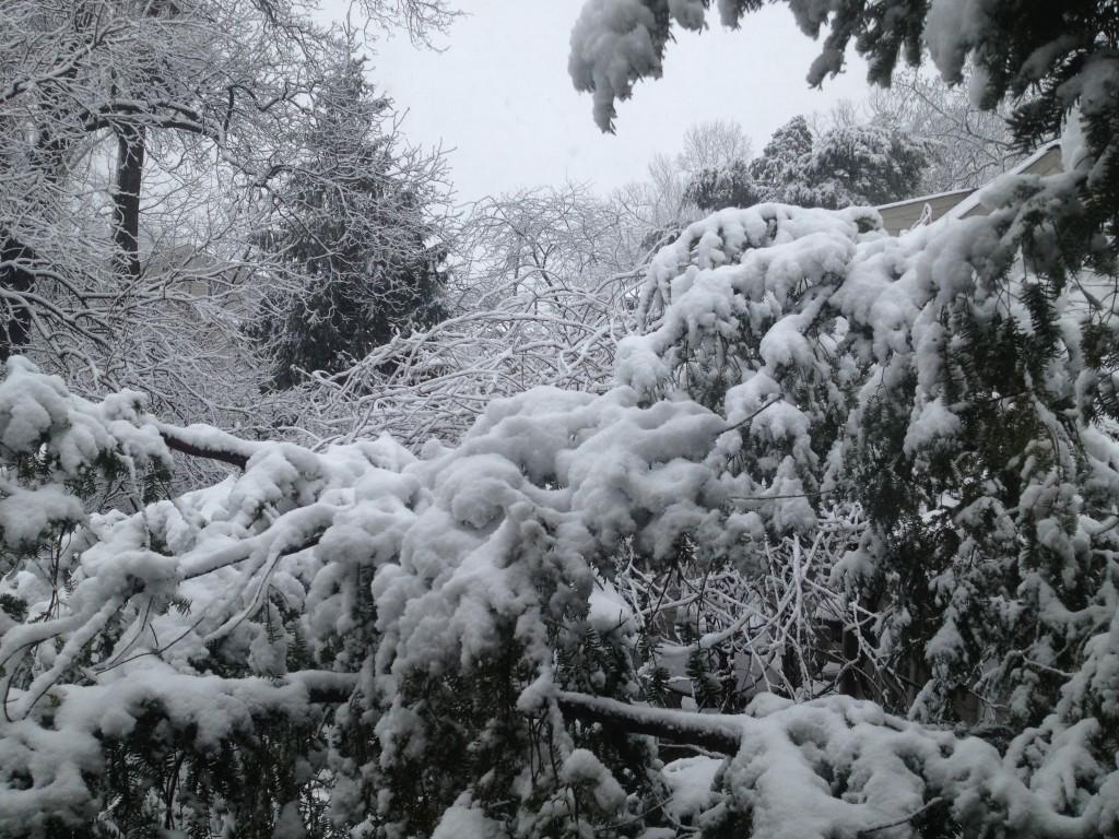 First snow mid-Atlantic 2013