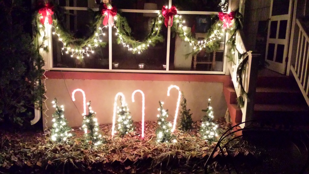 christmas lights and candy canes
